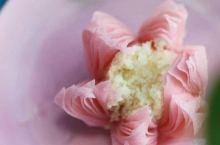 梨花白、樱花粉和柳芽青,染上自然色的美食,通通值得被安利!