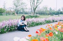 无锡太湖之滨私藏了一处小众赏花圣地,花美人还少,周末约起来!