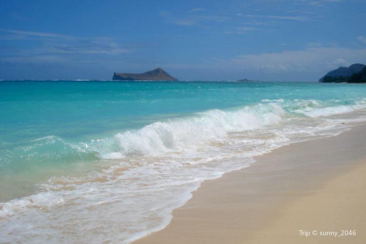 Waialea Beach1