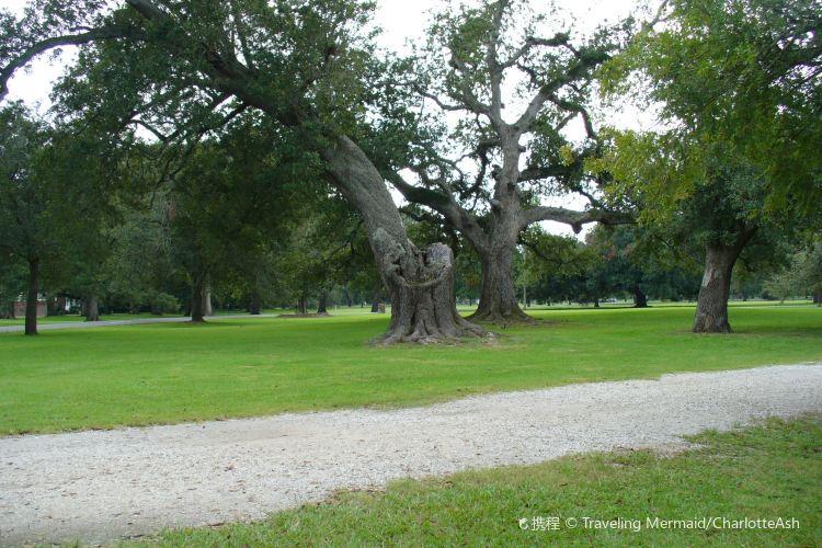 Audubon Park3