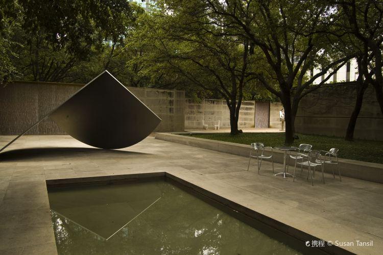 Dallas Museum of Art1
