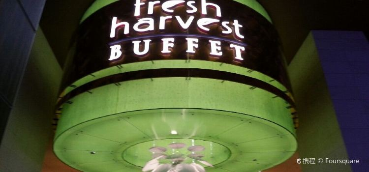 Fresh Harvest Buffet