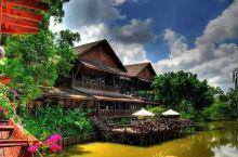 山打根西必洛自然度假村   被藏在一个名副其实的热带宝库,植物、草、巨大的树木和壮观的兰花盛开的西必