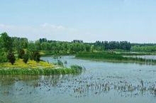 地大人少休闲好去处——汉石桥湿地公园