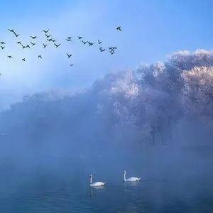 天鹅泉湿地公园旅游景点攻略图