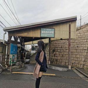 镰仓市旅游景点攻略图