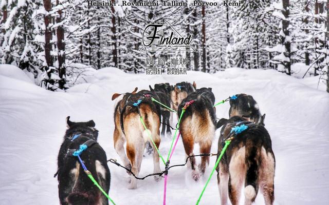 跨越北极圈,走进幸福的芬兰,漫游梦幻般的童话世界!