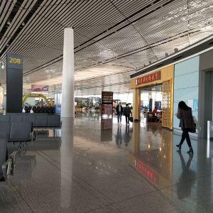 滨海国际机场旅游景点攻略图