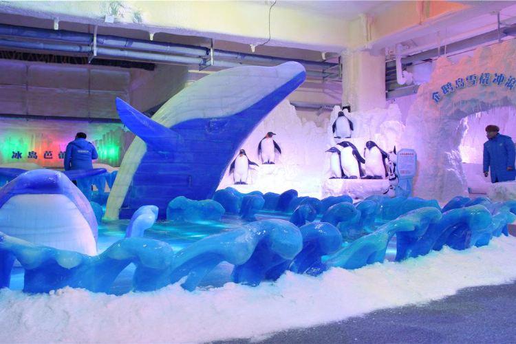 Changzhou Antarctic Ice and Snow Park