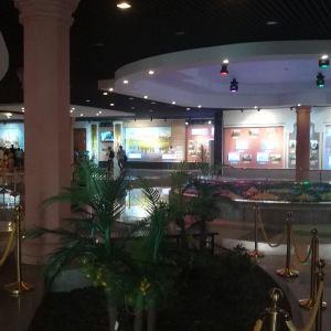 吴哥全景博物馆旅游景点攻略图
