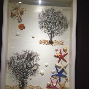 贝壳博物馆旅游景点攻略图