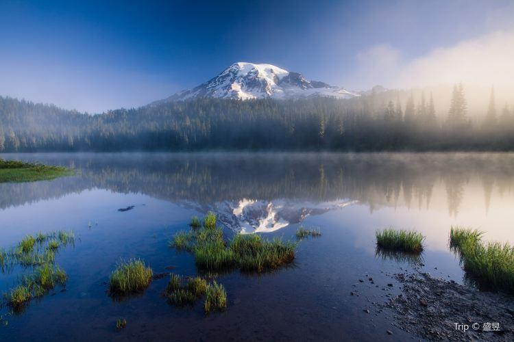 Mount Rainier National Park2