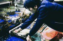 再见铜川海鲜市场,侬好上海筑地市场!