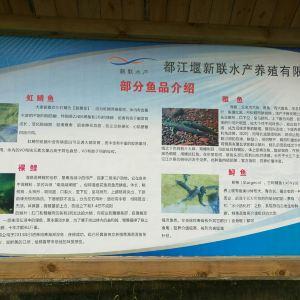 虹口自然保护区旅游景点攻略图