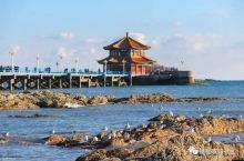 现在去青岛最省钱!错峰出行游客少,机票比高铁还便宜!