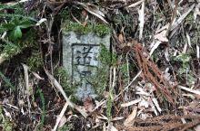 东京~箱根~富士:七天城乡结合之旅Day 5之箱根