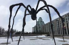 加拿大国家美术馆