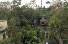 立园的大花园