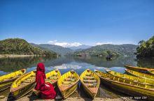 博卡拉第一大湖比格纳斯湖