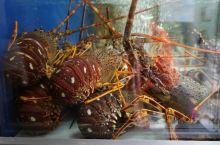 奥古斯塔街海鲜餐厅里的海鲜