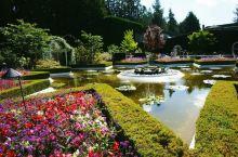 布查特花园,我,那似墙非墙,那似花非花