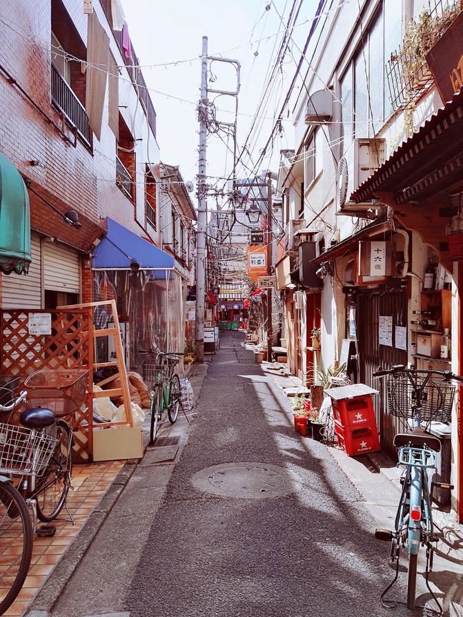 50岁60岁两人畅游日本12个城市暴走30天80个
