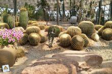 苏州大阳山植物园