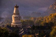 佛系之旅 l 来五台山祈福,感悟文殊师利菩萨的大智慧