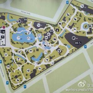 法兰克福动物园旅游景点攻略图