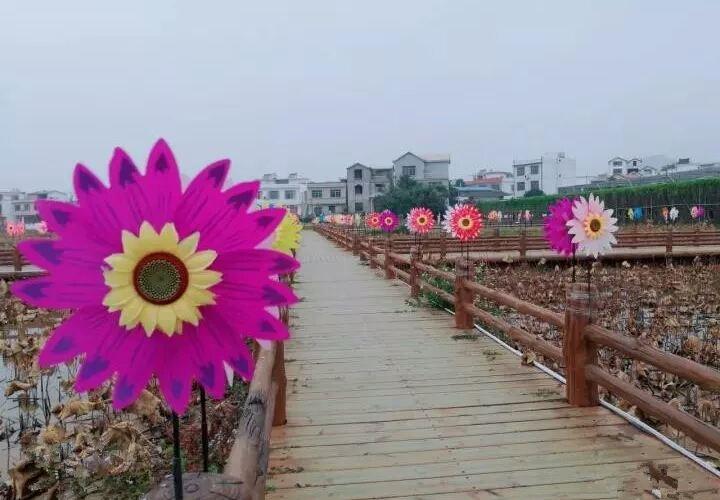Chabi Flower Sea1