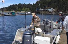 温哥华岛出海钓鱼,捞虾,捡生蚝