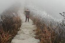 贵州黔东南丹寨龙泉山 如果不记录这次意外的际遇,我就对不起上苍预留我的这份情缘。那满山遍野只为我盛开