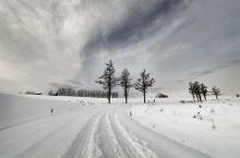 日本北海道10天7城雪地狂奔!快跟我们去雪地里撒点儿野!