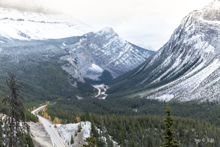 Icefields Parkway1