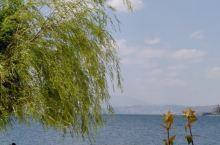 抚仙湖的美是,一切尽好!