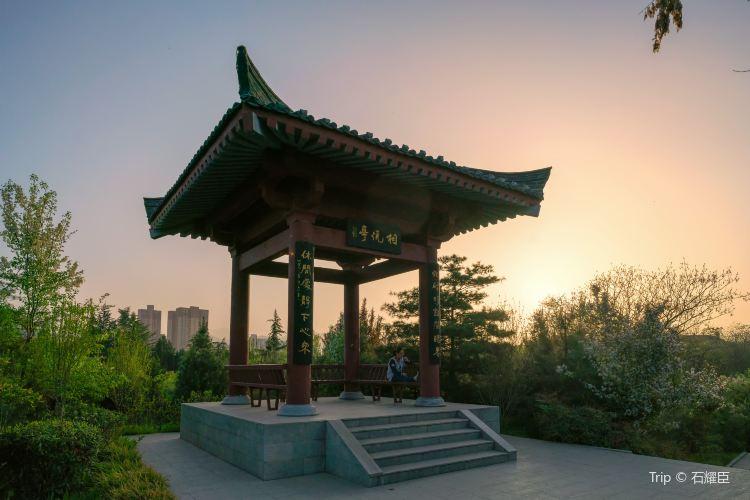 Baoji Yuanlin Botanical Garden4