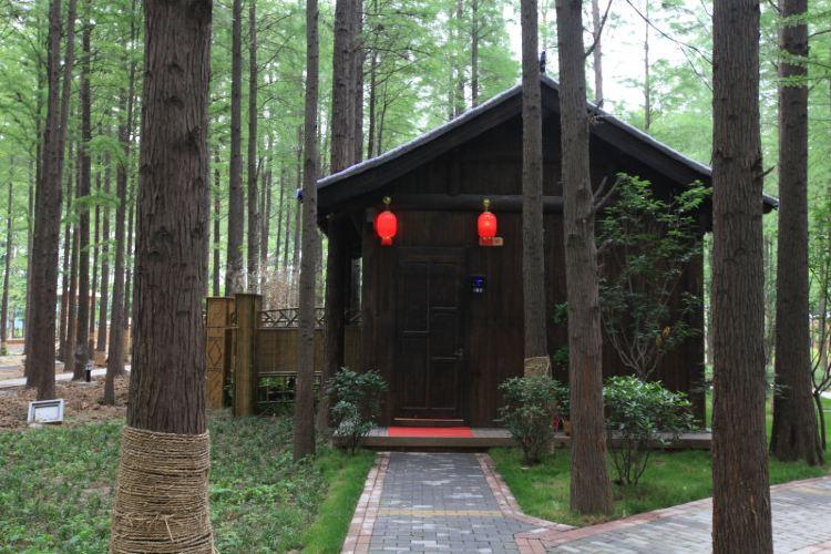 Hongze Lake Wetland and Hot Spring Resort2