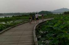 无锡游太湖