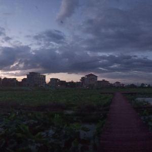 莲花村旅游景点攻略图