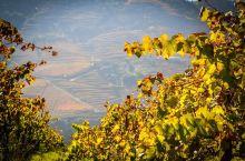 浓醇美酒、绚丽梯田,葡萄牙私藏美景杜罗河谷了解一下?!
