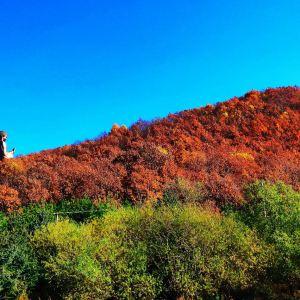 六鼎山文化旅游区旅游景点攻略图