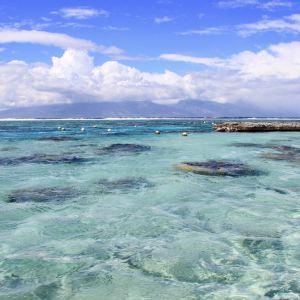 茉莉雅岛旅游景点攻略图