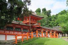 #瓜分10000元#橘色的春日大社、绿色的奈良公园