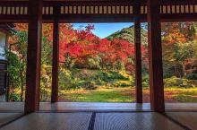 清水寺本坊庭园