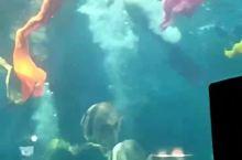 蓬莱海底世界美人鱼表演