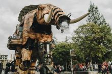 南特有大象!