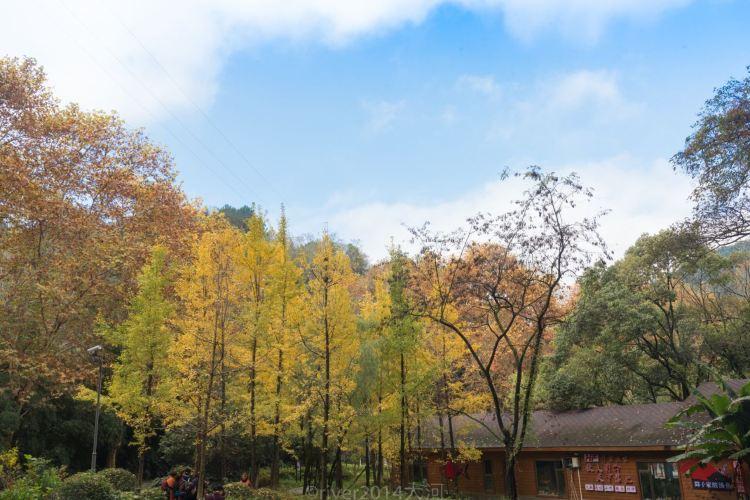 아하후국제습지공원2