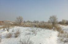 新疆维吾尔自治区玛纳斯县湿地公园