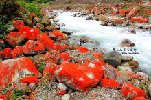 #向往的生活# 高原独特的红石公园