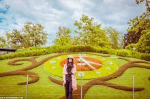 """#向往的生活#瑞士日内瓦美丽的""""花钟"""""""